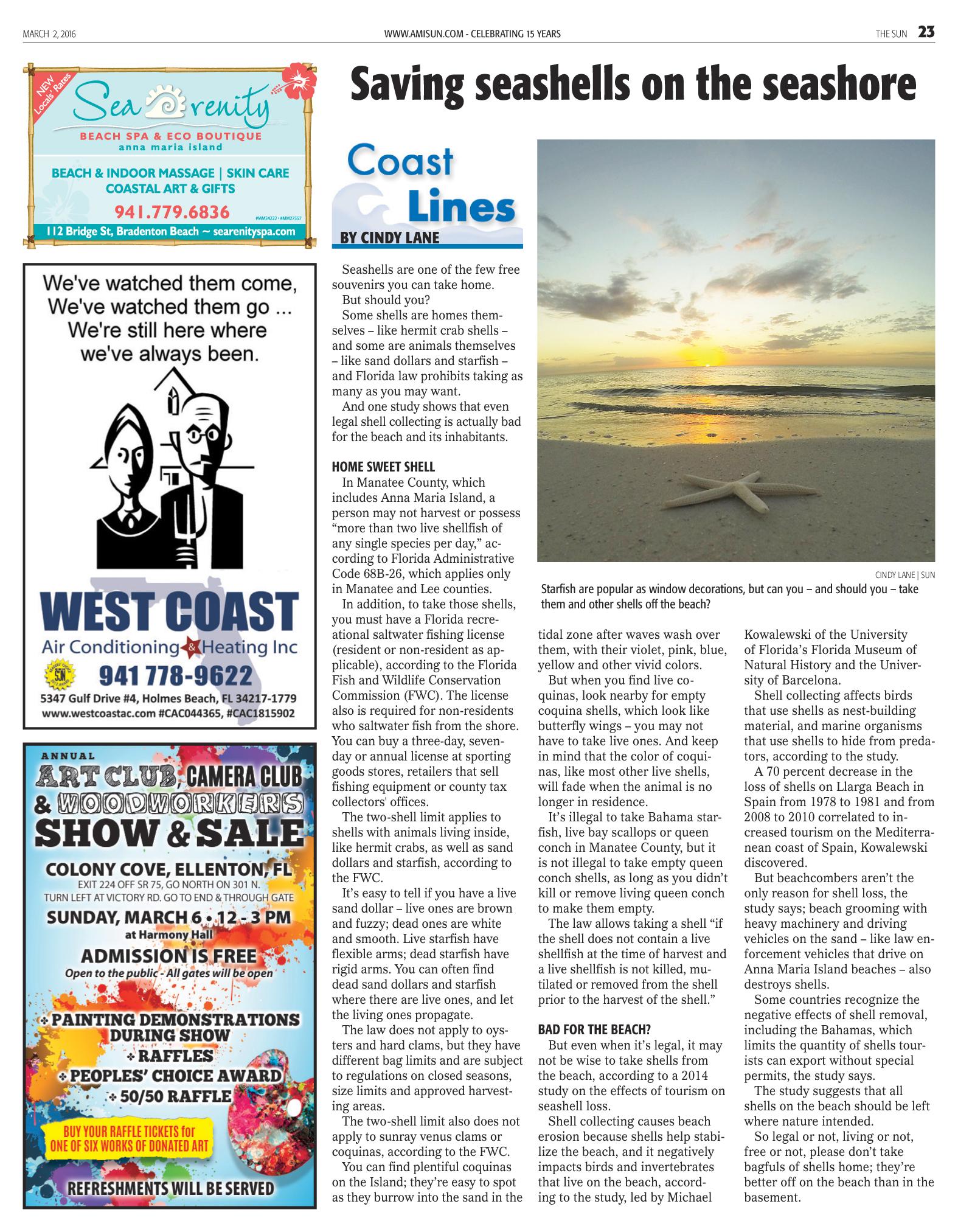 Coast Lines Saving seashells on the seashore 030216