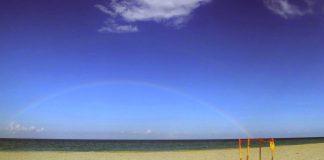Turtle rainbow