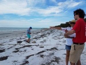 Hunsicker, Cortez Beach