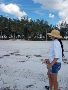 Todaro measures beach