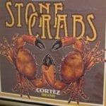 Cortez stone crab
