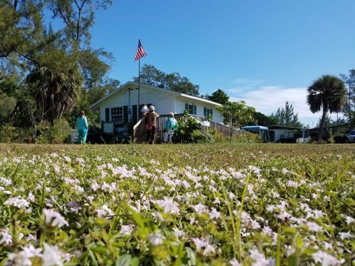 Cortez Cultural Center Veterans Day - Cindy Lane | Sun