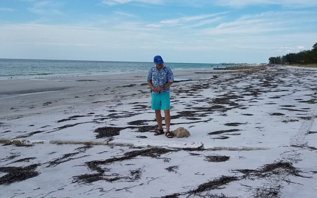 Coquina Beach rock groins
