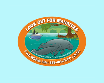 manatee decal