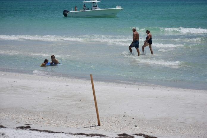 Anna Maria Beach Survey