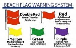 LifeLines: Beach flags