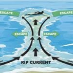 LifeLines: Rip current