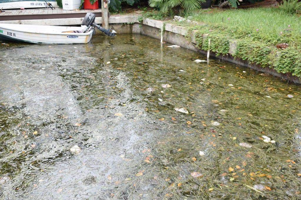 RTU BB Canal II