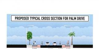 Holmes Beach multi use path palm