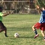 Center adult soccer gardner