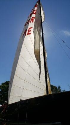 Cortez flea 1024 sailboat