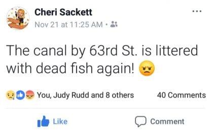 HB Fish Facebook 1128 S