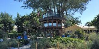 Holmes Beach tree house file photo