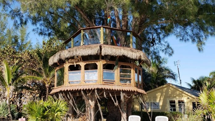 Tree house case back in court