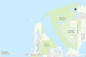Non-toxic blue-green algae at Robinson Preserve