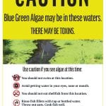 Blue-green algae warning signs coming