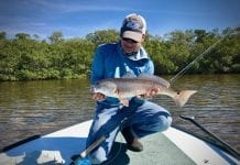 Reel Time: Cameras – catch and release digitally