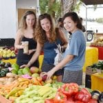 Anna Maria farmers' market returns