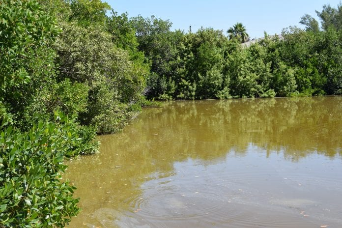 Problems plague Spring Lake residents