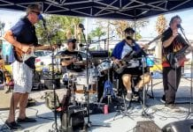 Music festival assists Wildlife Inc.