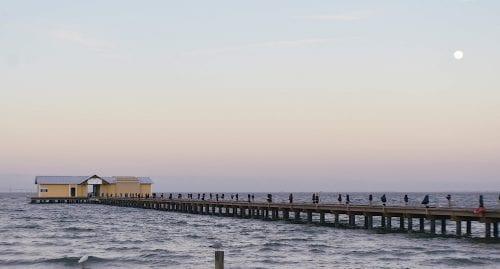 Commission rejects Schoenfelder's pier lease offer