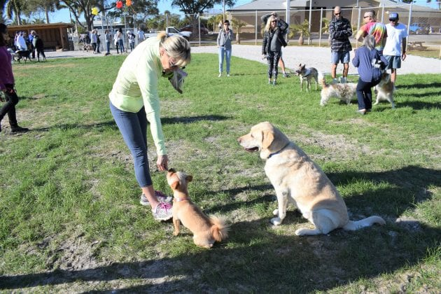 Pups and owners celebrate dog park opening
