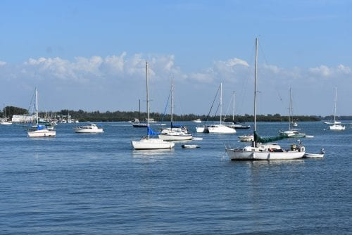 High enterococcus levels in Bradenton Beach waters cause for concern